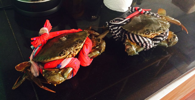 Ritsu got crabs …